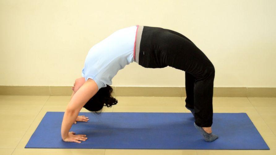 Advanced Asana Workshop: AMI Yoga